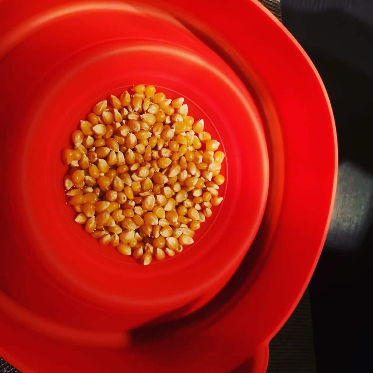 Popcorn Popper wird mit Popcorn befüllt.